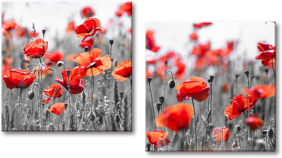 Decor Well - Red Poppies in Grey Flower Field Canvas Wall Art Picture Print, Modern Red and Grey Decor Set of 2