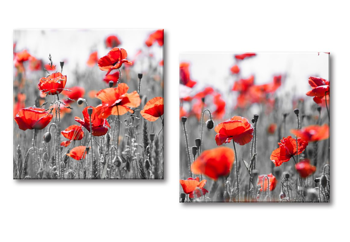 Terrific Decor Well Red Poppies In Grey Flower Field Canvas Wall Art Picture Print Modern Red And Grey Decor Set Of 2 Unemploymentrelief Wooden Chair Designs For Living Room Unemploymentrelieforg