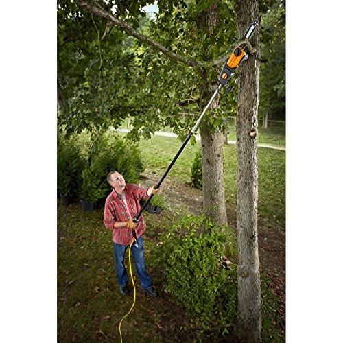 """WORX Electric 10"""" pole chainsaw"""