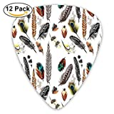Newfood Ss Collection Of Types Of Feathers In Vivid Tones With Grey Splashes Guitar Picks 12/Pack Set