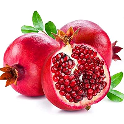 Cederay 30pcs Pomegranate Bonsai Seeds Delicious Fruit Succulents Tree Bag Home Garden Fruits : Garden & Outdoor