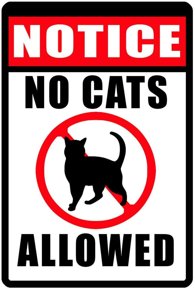 PotteLove – Cartel de Gato de Aluminio Duradero con Texto en inglés No Cats Perlowed