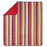 Stripe Indoor/Outdoor Throw Blanket in Red Multi