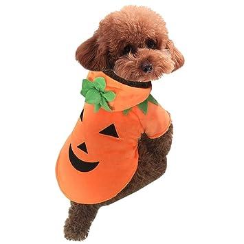 Amazoncom Dora Bridal Pet Dog Clothes Cat Puppy Halloween Costume