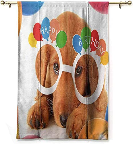 DONEECKL Birthday Decorations for Kids Roman Curtain Puppy Dog Golden with Glasses Balloons Present Party Theme Soft Texture W48 xL64 Multicolor