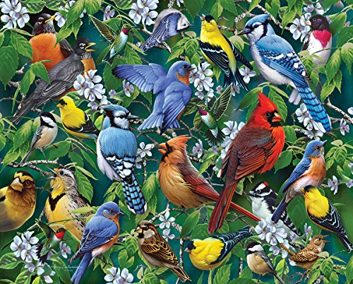 Blossom Giftware (White Mountain Puzzles Birds & Blossoms Jigsaw Puzzle (1000)