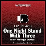 One Night Stand with Three: MMF Menage Erotica | Liz Black