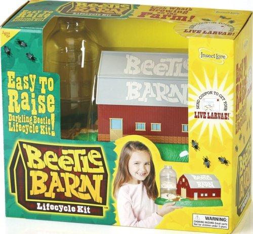 Beetle Barn by Insect Lore