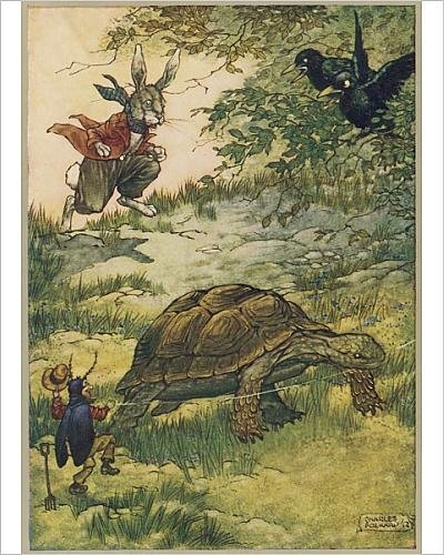 Photographic Print Of Tortoise And Hare Fol