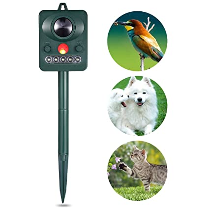Amazon.com: EbuyChX Solar Powered Ultrasonic Animal Bird Repeller with Infrared Detector Green: Home & Kitchen