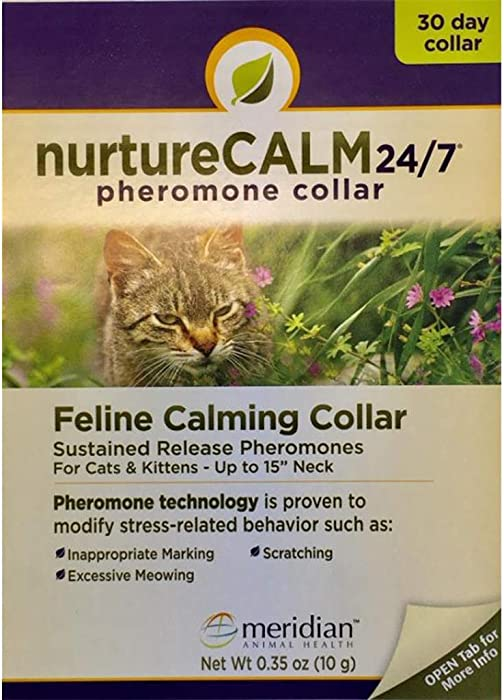 The Best Nature Cat Collar