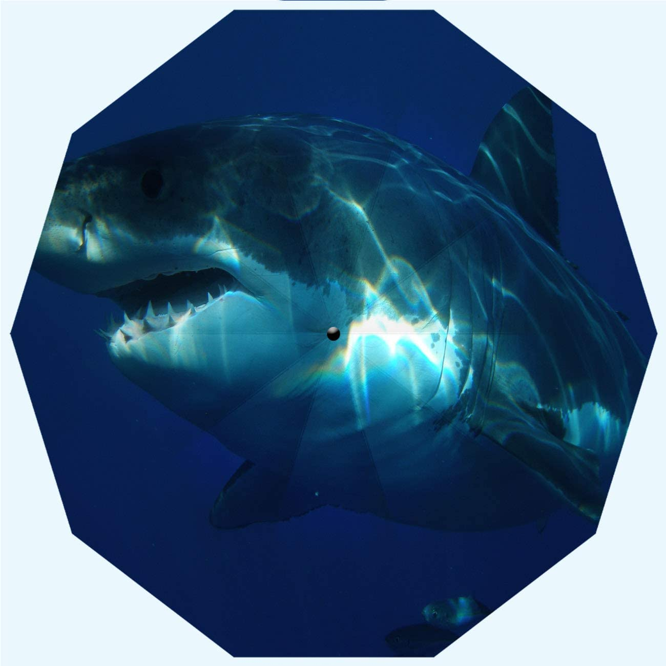 Shark Fashion Travel Umbrella, UV Protection Automatic Opening And Closing Great White Shark Dangerous Predator Guadalupe Mexico Underwater Windproof, Rainproof, Men, Ladies, 10 Ribs, 42 Inches