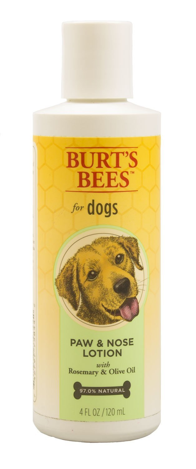 Burt's Bees for Pets for Dogs All-Natural Paw & Nose Lotion with Rosemary & Olive Oil | For All Dogs and Puppies, 4oz, All-Natural Paw & Nose Lotion with Rosemary & Olive Oil | Best Treatment for All Dogs and Puppies With Dry Nose and Paws