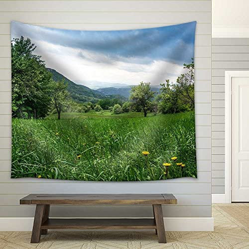 Dandelions in Green Grass in Untouchable Nature Field Fabric Wall