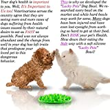 Slow Feed Dog Bowl - FDA Approved Bloat Remedy will Guarantee Slower Feeding time - Great for Cats (Green, Small)