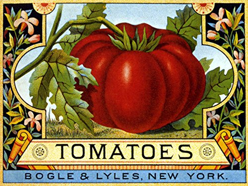 (TOMATOES BOGLE LYLES NEW YORK USA CRATE LABELS VINTAGE POSTER REPRO)