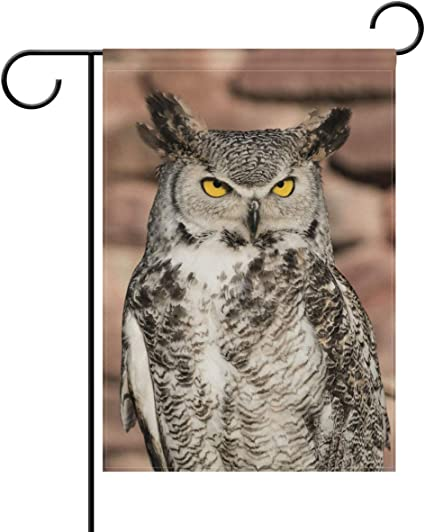 Amazon Com Yateli Double Sided Lovely Animal Serious Owl I M The King Of Bird Polyester House Garden Flag Banner 28x40 Inch For Anniversary Family Garden Decor Garden Outdoor