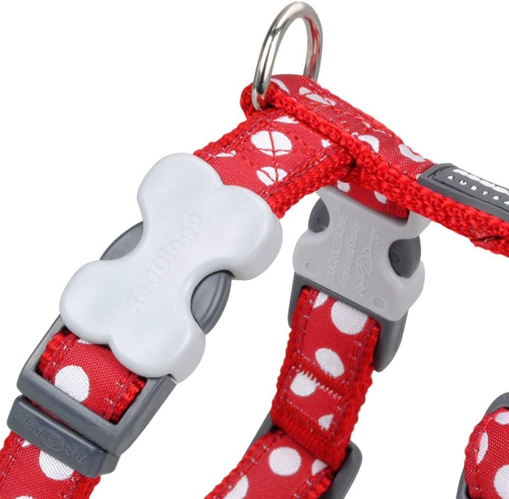 Red Dingo GmbH Spots - Collar para perro , Rojo, M: Amazon.es ...