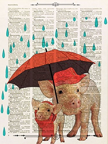 Stampa maialino sotto la pioggia su pagina di libro antico