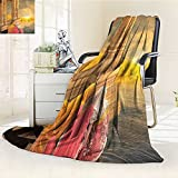 AmaPark Digital Printing Blanket India Women in a Temple Holy Heritage Earth Yellow Pink Summer Quilt Comforter