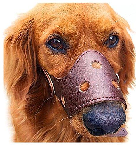 Fomei Harmless Ultrasonic Dog Bark Control Devices by Waterproof Outdoor Anti Dog Bark Controller, Ultrasonic Training Dog devices, Bark Stop Repeller Silence Dog Training Control Repellent