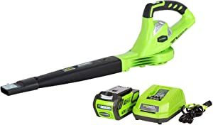 Greenworks 40V 150 MPH Cordless Leaf Blower, 4.0Ah Battery and Charger Included 24212