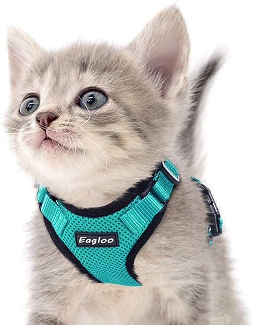 Eagloo Arnés para gato a prueba de escape, pequeño arnés de malla suave, arnés ajustable para gato, chaleco con correa reflectante, clip de metal, ajuste cómodo para mascotas, gato, cachorro, conejo.: Amazon.es: