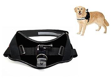 ACTIVEON ACM09DV Dog Harness Accesorio para cámara de Deportes de acción - Accesorios para cámara de Deportes de acción (Dog Harness, Perro, ...