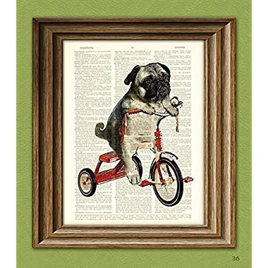 CollageOrama Pug Art Print Mike the Trike pug dog on a tricycle original art vintage dictionary page book art print,8.5 x 11 Inch