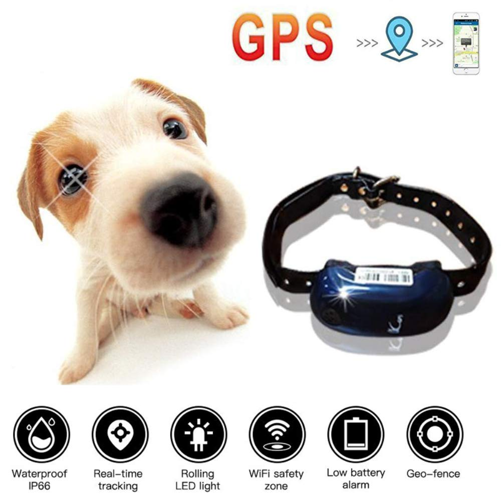 HUAXING Pet GPS Tracker,1000Mah Long Standby Time for 300 Hours Lightweight and Waterproof for Dogs/Cats/Pets.