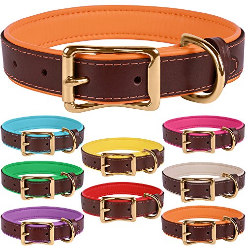 (BronzeDog Leather Dog Collar Premium Soft Padded Heavy Duty Pet Collars for Dogs Small Medium Large Brown Pink Blue Red Green Purple Beige (Neck Size 18