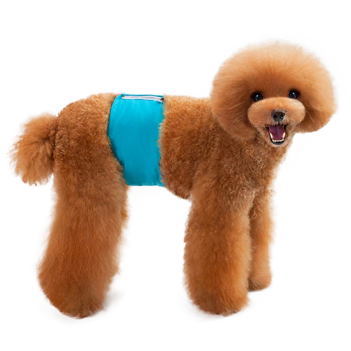 UHeng 4 PCS Male Dog Reusable Wrap Diaper Washable Puppy Belly Band by UHeng (Image #6)
