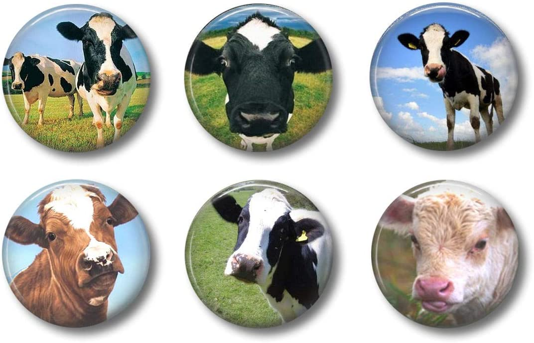 Cute Locker Magnets For Teens - Funny Cows - Fun School Supplies - Whiteboard Office or Fridge - Gift Set (Cows)