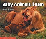 Baby Animals Learn, Pamela Chanko, 0590761579