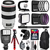 Canon EF 70-300mm IS USM Lens + Flash + LED Kit + Stabilizing Handle + UV-CPL-FLD Filters + Macro Filter Kit + 72 Monopod + Lens Hood + 64GB Class 10 + Backpack + Tripod - International Version
