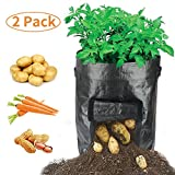 HYRIXDIRECT Portable 2-Pack Black Garden Potato Grow Bags Home Farm Planter Planting Bag PE Tub Pouch 10 Gallon Handles Access Flap for Potato, Carrot, Onion & Vegetables Plant