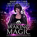 Waking Magic: The Revelations of Oriceran: The Leira Chronicles, Volume 1 Hörbuch von Martha Carr, Michael Anderle Gesprochen von: Carly Robins