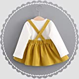 0-3 Years Old Girls Dresses Toddler Kids Baby Shirt Cute Rabbit Bandage Suit Mini Dress Tops Princess Clothes