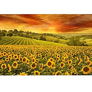 Black Temptation Home Decor 1000 Pezzi Puzzle Girasole Pattern