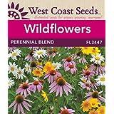 Wildflower Seeds - Perennial Mix