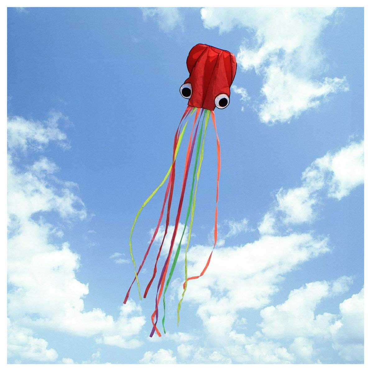 FUNTOK Drachen Kite 2 Arte Oktopus Drachen Single Line und Soft Drachen Doppellinie (Oktopus Drachen Single Line) Youy