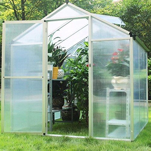 Sliverylake 6'x6' Polycarbonate Greenhouse Aluminum Frame All Weather Walk-In Green House