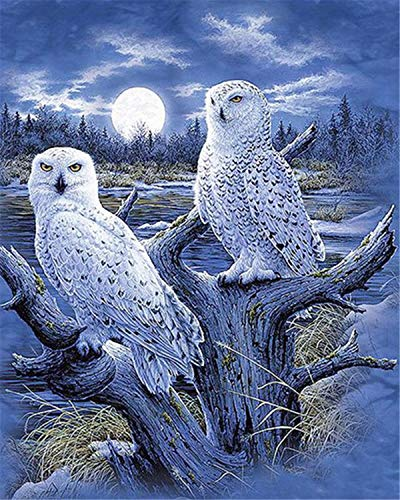 DIY 5D Diamond Painting by Number Kits, Full Drill Crystal Rhinestone Diamond Embroidery Paintings Pictures Arts Craft for Home Wall Decor - White Owls 12x16inch