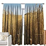 interesting walk in corner shower  NatureRoom Darkening CurtainsOld Narrow Floating Walkway in The Lake Surrounded by Reeds Greenland Nature ThemeBlackout Draperies for Bedroom W108 xL72 Yellow Brown