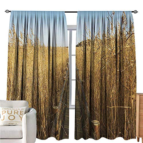 NatureRoom Darkening CurtainsOld Narrow Floating Walkway in The Lake Surrounded by Reeds Greenland Nature ThemeBlackout Draperies for Bedroom W108 xL72 Yellow Brown
