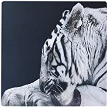 3dRose LLC 8 x 8 x 0.25 Inches Grooming White Tiger Mouse Pad (mp_17536_1)