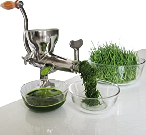 Convenient food storeroom double jian stainless steel manual wheatgrass juicer