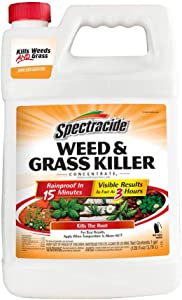 Spectracide HG-96620 Walkways and Driveways Weed and Grass Killer Concentrate 1 Gallon, 1 Gal
