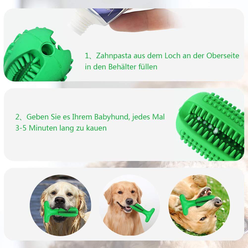 Ciaoed Hundespielzeug Kauspielzeug Hundezahnbürste,Hunde Zahnbürste mit ungiftig und umweltfreundlich naturkautschuk für kleine mittelgroße und große Hunde Pet zahnreinigung Zahnpflege Geschenk
