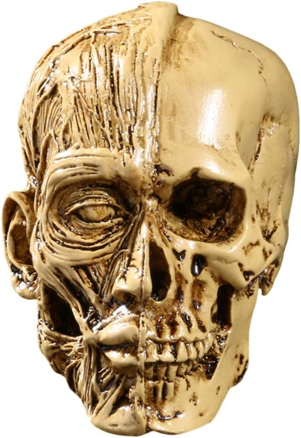 Wakauto Skull Head Ornament Resin Carving Creative Skull Head Sculpture for Party Home Halloween Golden